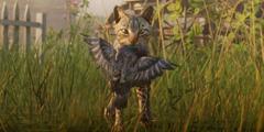 《荒野大镖客2》草药大师挑战任务一览 草药大师挑战怎么完成?