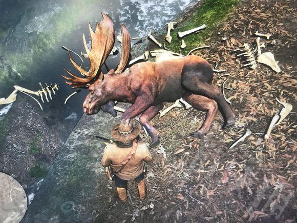 荒野大镖客2非传说驼鹿在哪里狩猎 非传说驼鹿刷新地点指南2