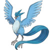 #144 急凍鳥