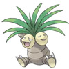 #103 椰蛋樹