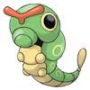 #10 绿毛虫