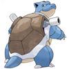#9 水箭龟