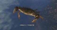 《古剑奇谭三》钓鱼攻略图文指南 怎么钓鱼?