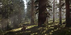 《荒野大镖客2》线上模式有哪些玩法模式?线上模式玩法模式一览
