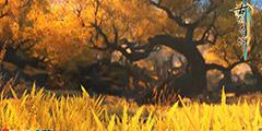 《古剑奇谭3》极限伤害怎么搭配?极限伤害搭配攻略