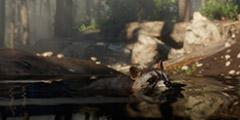 《荒野大镖客2》线上营地建在哪比较好?线上营地推荐地点一览