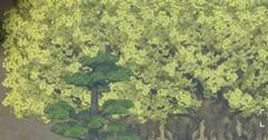 《了不起的修仙模拟器》巨银杏怎么种?巨银杏种植方法介绍