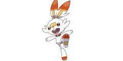 《宝可梦剑盾》御三家选哪个好 炎兔儿技能+属性全介绍