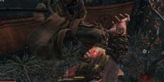 《只狼影逝二度》火手在哪 火手位置及其线索介绍