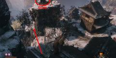 《只狼影逝二度》全支线任务攻略 全支线任务流程分享
