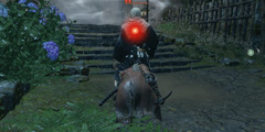 《只狼影逝二度》忍者猎人怎么过 忍者猎人攻略