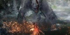 《只狼影逝二度》猴子有哪些 游戏中猿猴历史原型探究