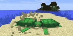 《我的世界》海龟蛋孵化要多久 海龟蛋孵化方法说明