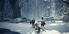 《怪物猎人世界》冰原重弩新动作介绍 冰原重弩新技能演示