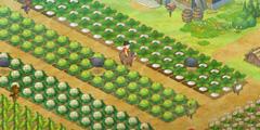 《哆啦A梦牧场物语》出货额怎么看 全道具出货额查看方法介绍