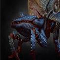 重甲蟹蜘蛛