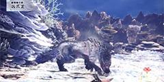 《怪物猎人世界》冰原凶爪龙介绍 凶爪龙怎么样?