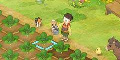 《哆啦A梦牧场物语》精灵在哪?秘密道具+精灵位置视频分享
