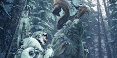《怪物猎人世界》冰原天地煌啼龙重弩配装思路及打法分享