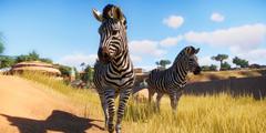 《动物园之星》预购奖励是什么?游戏预购奖励介绍一览