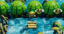 《塞爾達傳說夢見島》貝殼在哪里 全貝殼收集攻略
