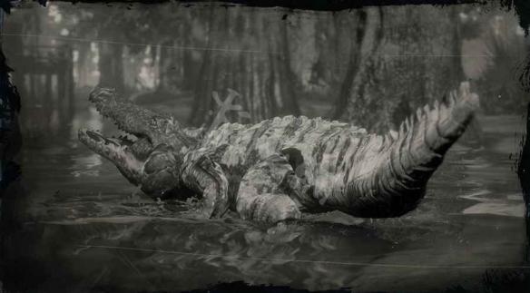 《荒野大镖客2》传奇鳄鱼什么时候捉 传奇鳄鱼触发方式一览