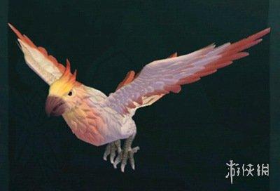 《创造与魔法》云斑鹦鸟饲料怎么做 云斑鹦鸟饲料保底介绍(图2)