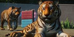 《动物园之星》全流程视频攻略合集 游戏怎么玩?