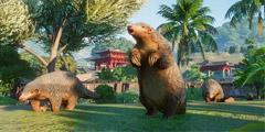《动物园之星》喂食方法一览 游戏不喂食怎么解决