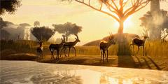 《动物园之星》第二关怎么玩?第二关攻略视频一览
