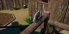 《动物园之星》初体验图文心得分享 游戏值得买吗?