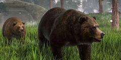 《动物园之星》灰熊屋怎么建造?灰熊屋建造方法视频分享