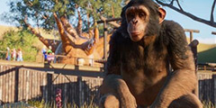 《动物园之星》日本猕猴园建造教学视频 日本猕猴园怎么建?
