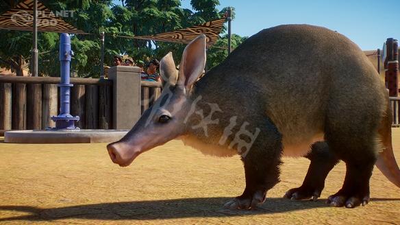 《动物园之星》动物有什么?全动物图鉴