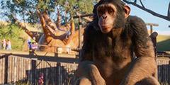 《动物园之星》全部动物图鉴视频分享 动物种类有哪些?