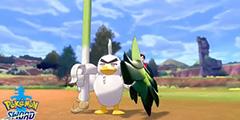 《宝可梦剑盾》大葱鸭怎么获得?大葱鸭捕捉位置介绍