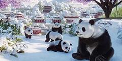 《动物园之星》展示区动物怎么放 新手赚钱方法一览