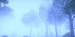 《宝可梦剑盾》各地图NPC有哪些 全地图收集攻略介绍