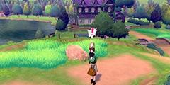 《宝可梦剑盾》孵蛋攻略详解 孵蛋技巧分享