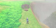《宝可梦剑盾》巨人帽岩稀有宝可梦有哪些 巨人帽岩稀有精灵介绍汇总