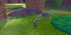 《宝可梦剑盾》巨石原野精灵巢穴一览 巨石原野稀有宝可梦汇总