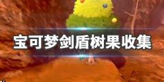 《宝可梦剑盾》树果怎么刷 全树果收集图文攻略