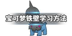 《宝可梦剑盾》铁壁技能效果介绍 铁壁技能获得方法说明