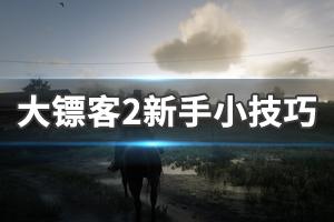 《荒野大镖客2》新手小技巧介绍 常用技巧分享