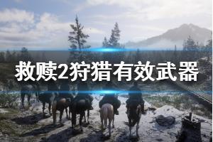 《荒野大镖客2》动物体型分类介绍 狩猎动物有效武器一览
