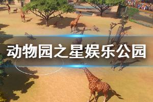 《动物园之星》迈尔斯动物娱乐公园怎么过 迈尔斯动物娱乐公园玩法一览