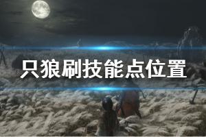 《只狼影逝二度》前期刷技能点位置一览 游戏技能点怎么刷