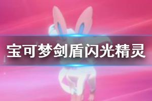 《宝可梦剑盾》怎么快速刷极巨闪光精灵 快速刷极巨闪光精灵方法一览