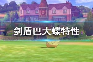 《宝可梦剑盾》巴大蝶特性解析 巴大蝶怎么配招?