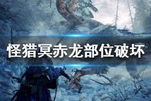 《怪物猎人世界冰原》冥赤龙可破坏部位一览 冥赤龙各部位破坏点数介绍
